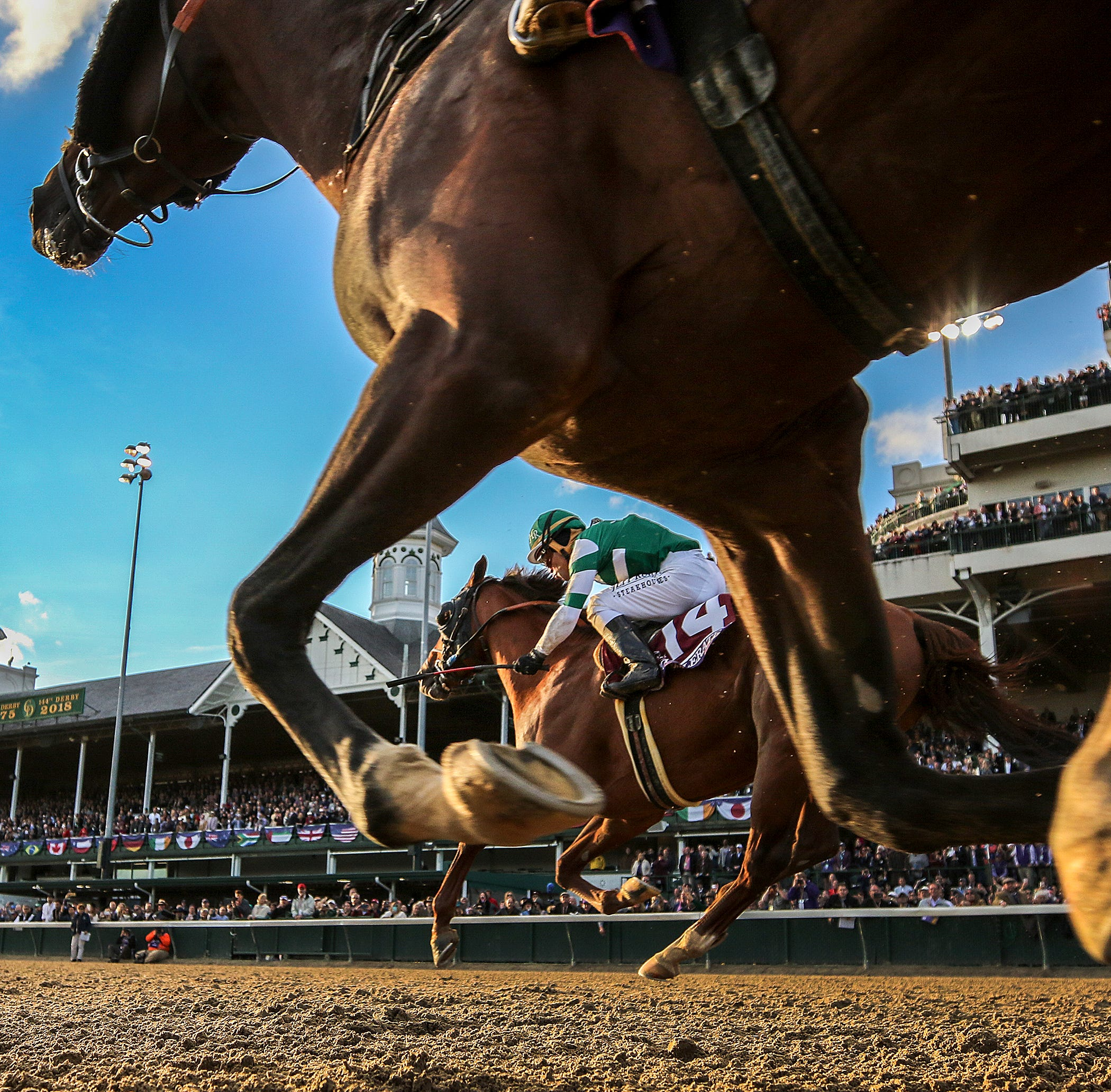 Churchill Downs is one of the deadliest racetracks in America