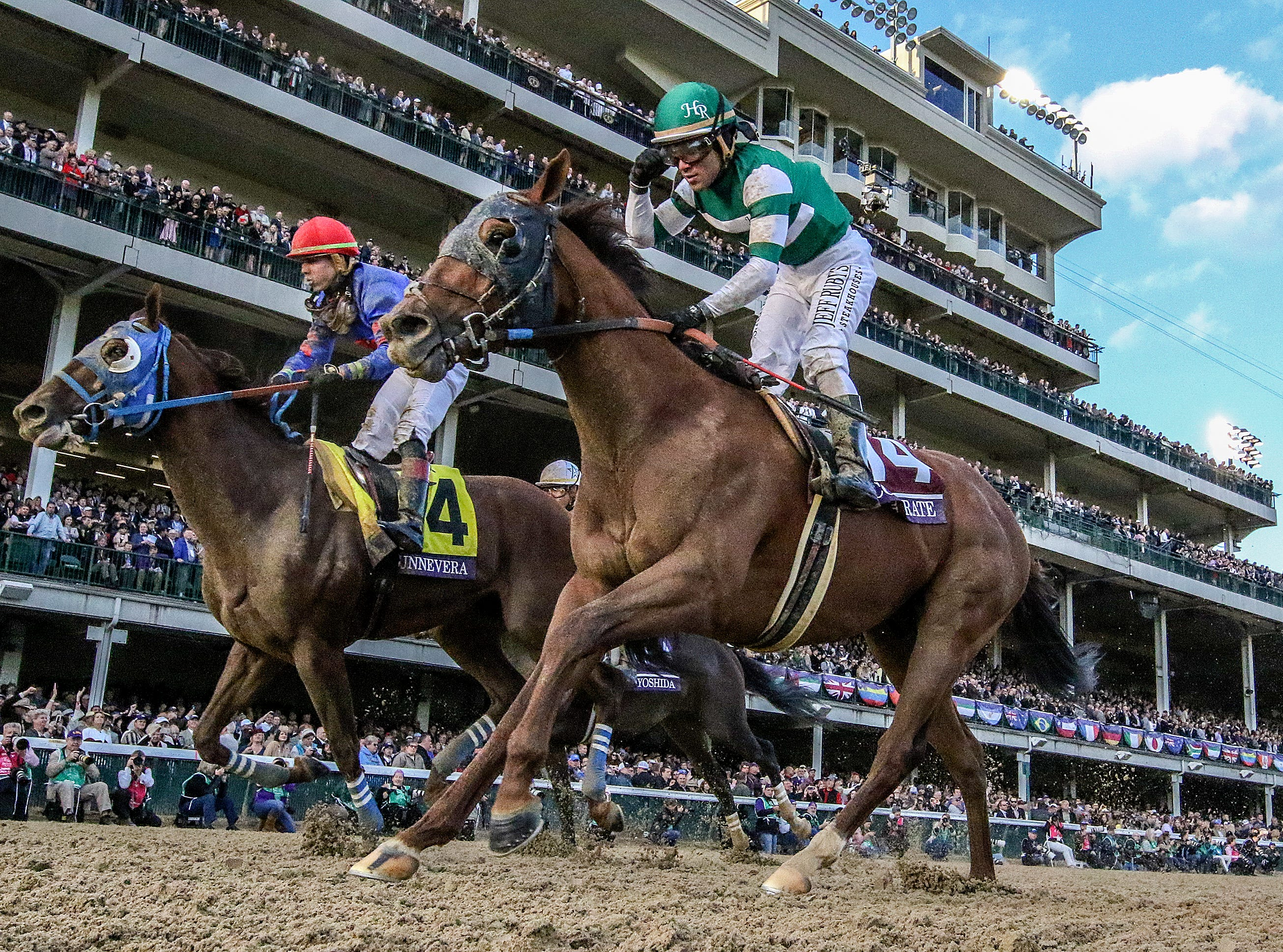 Will Accelerate be Horse of the Year after Breeders' Cup Classic win?