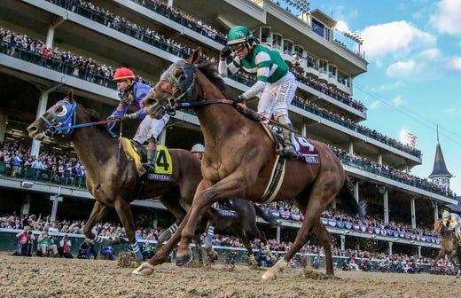 Horse Racing Memphis Rhodes Professor One Of World S Best