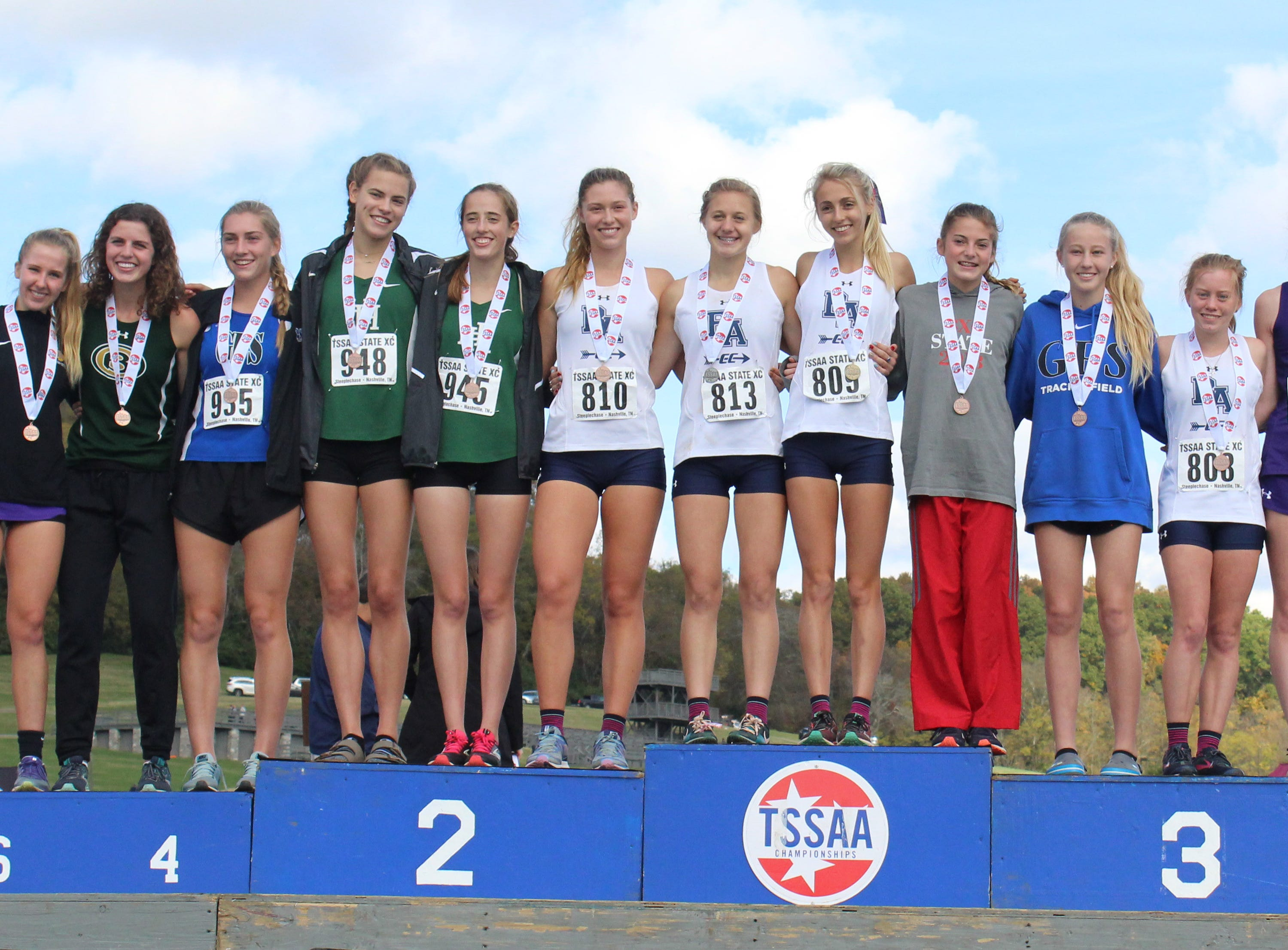 The top 15 finishers in the Division II-AA girls cross country state meet pose for a picture.