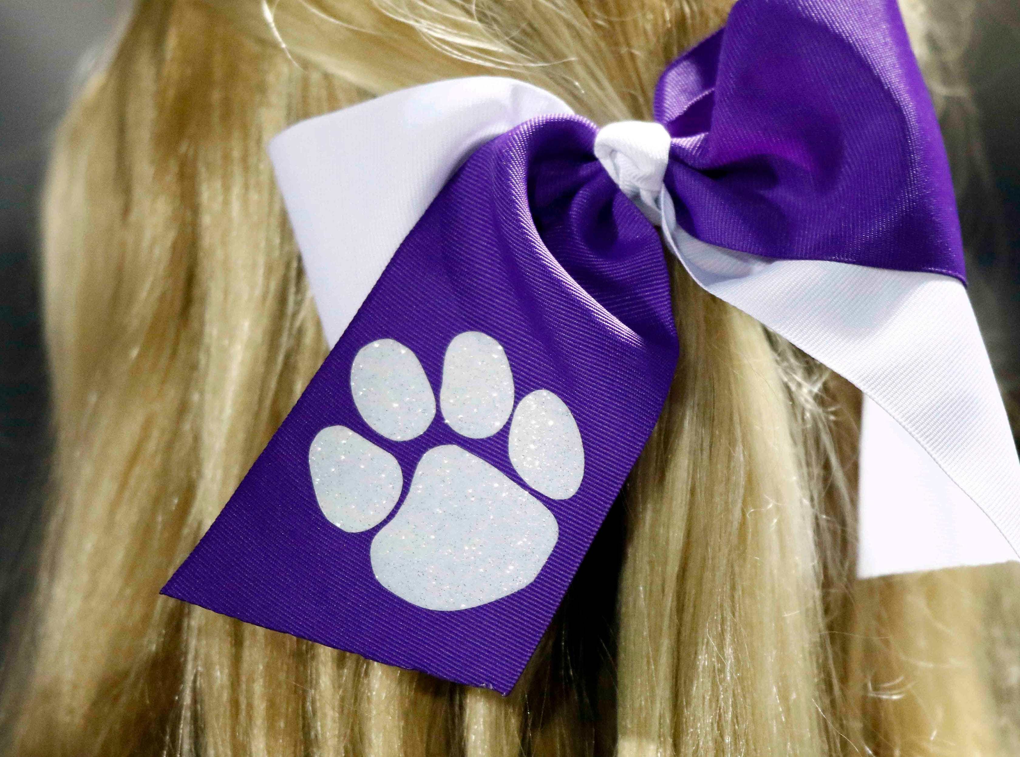 A ribbon with a paw on it is worn by a CPA cheerleader during their game against USJ Friday, Nov. 2, 2018, in Nashville, Tenn.