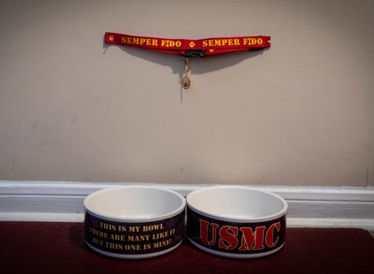 US Marines-themed dog bowls and a collar await Elma Bunch's service dog, Glory, days before her arrival at her home in Bellevue.