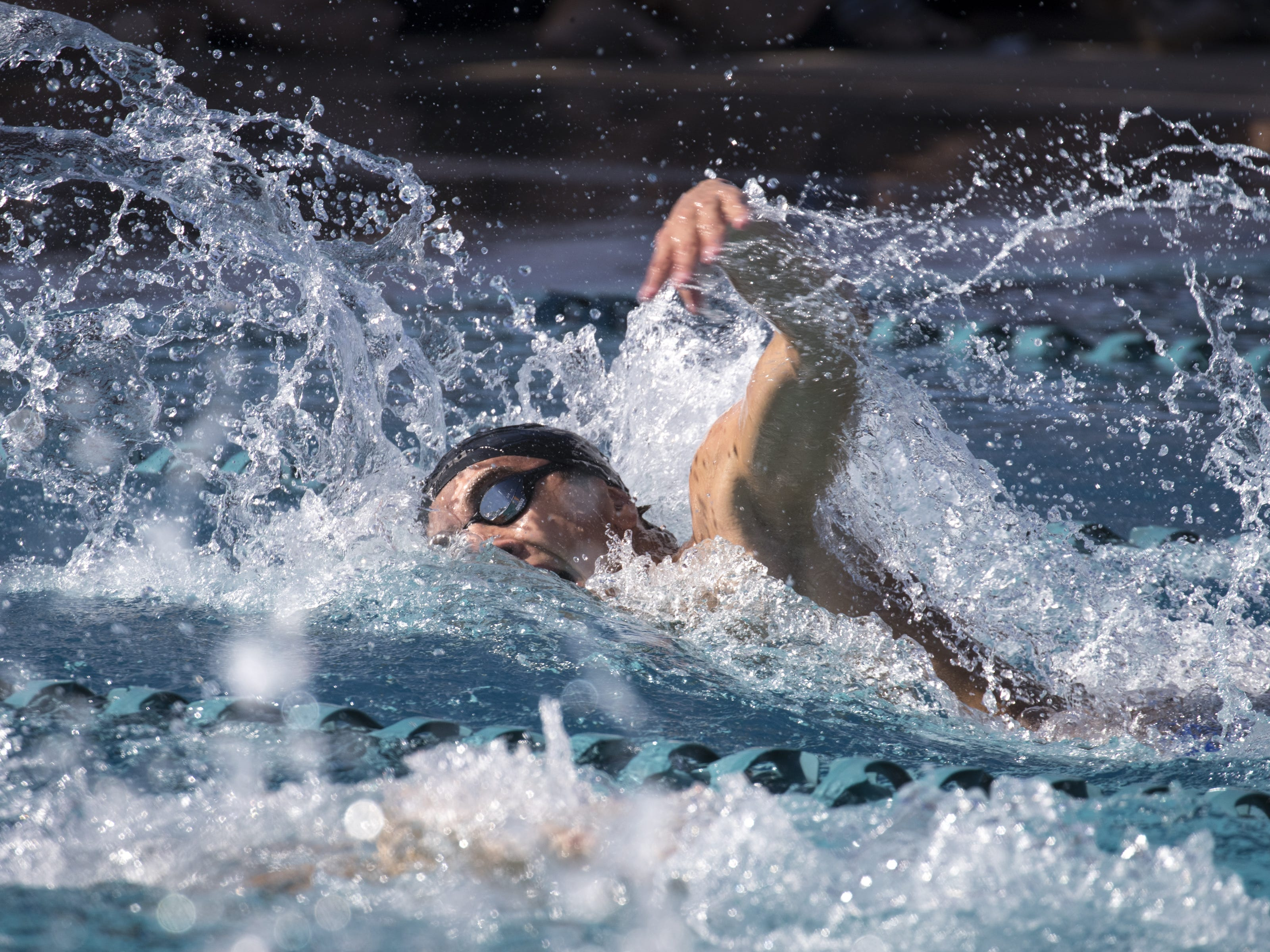 Jered Moore (Cactus Shadows) swims the 100 Freestyle, November 3, 2018, during the AIA Division II state swimming finals at the Skyline Aquatic Center, Mesa. Moore won the event.
