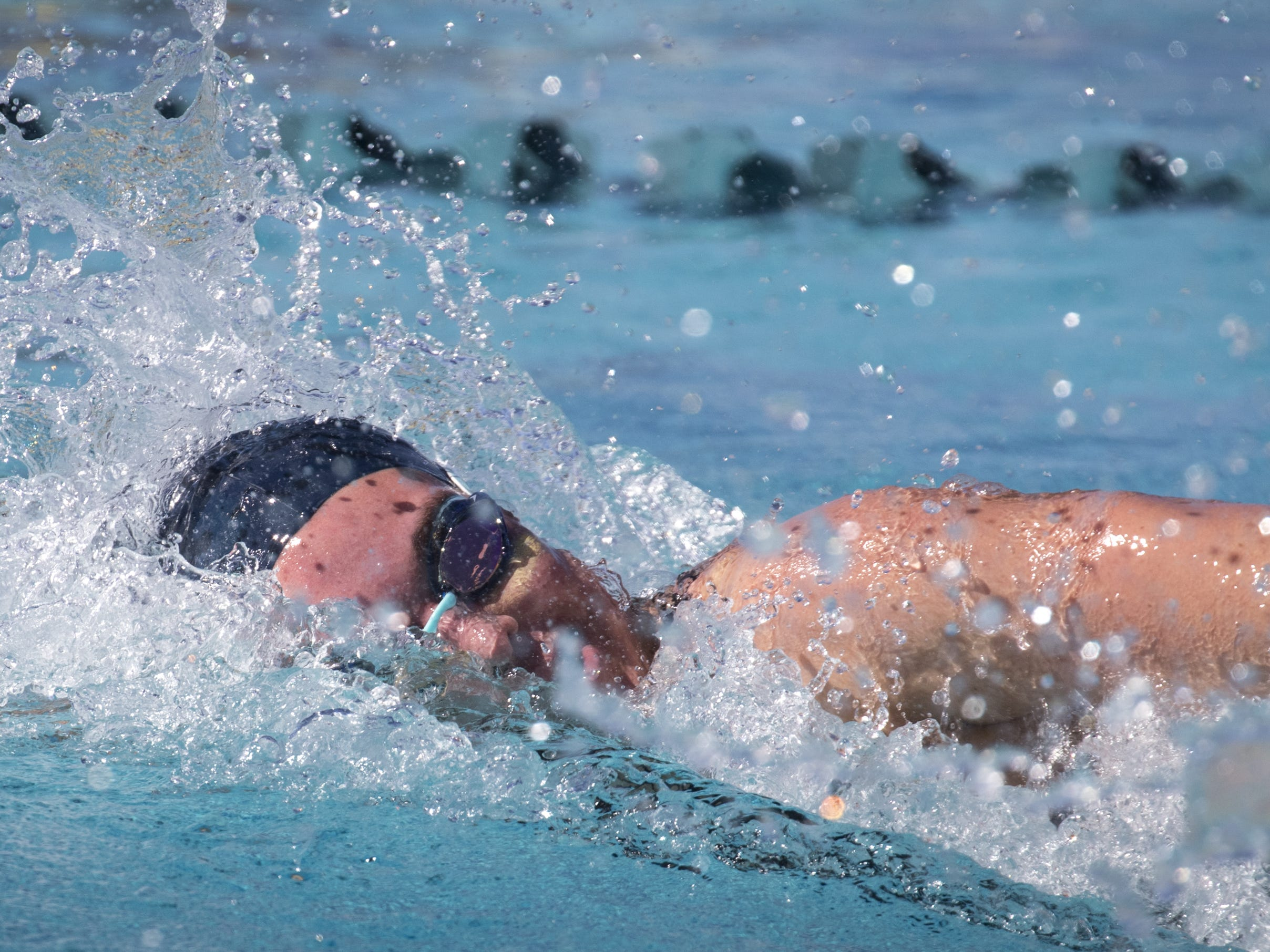 Hannah Houlton (Ironwood Ridge) swims the 100 Freestyle, November 3, 2018, during the AIA Division II state swimming finals at the Skyline Aquatic Center, Mesa. Houlton won the event.