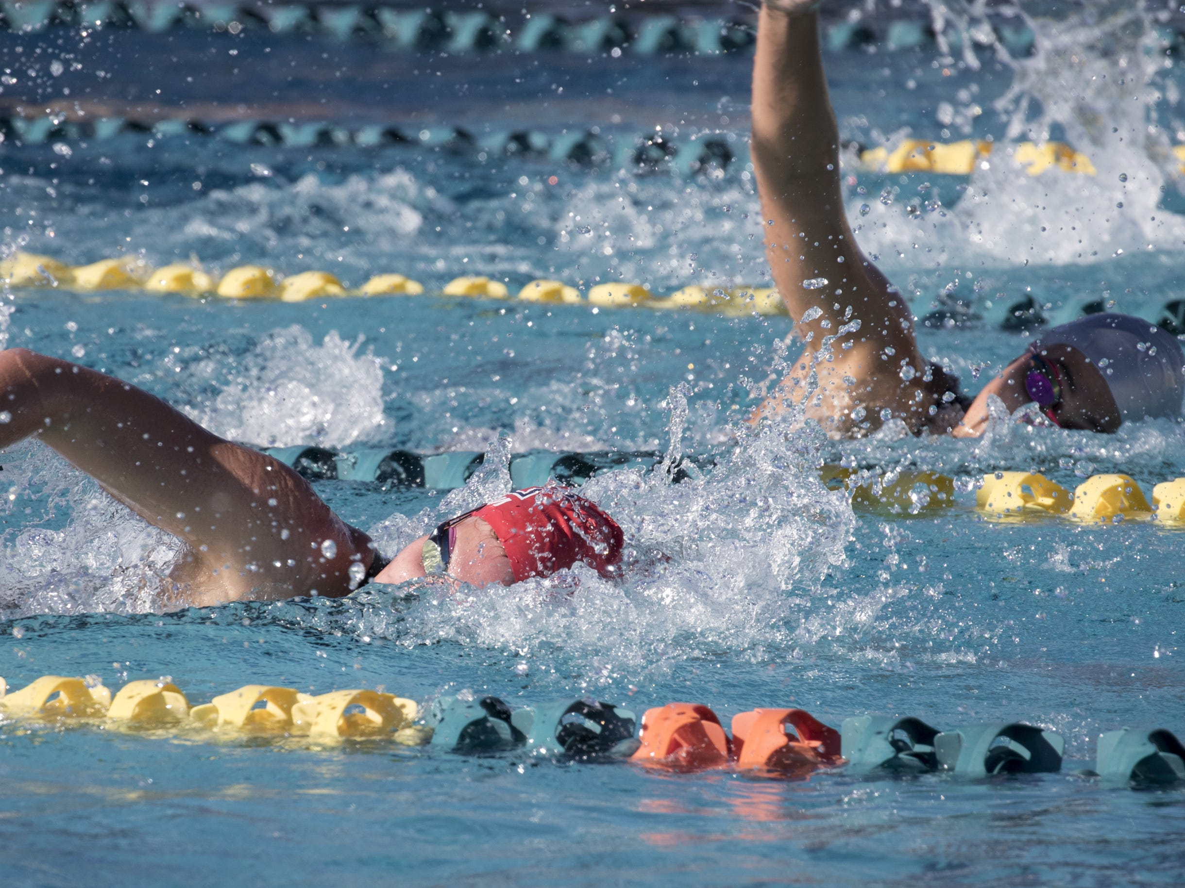 Alexa Teneyck (Arcadia) swims the 200 Freestyle, November 3, 2018, during the AIA Division II state swimming finals at the Skyline Aquatic Center, Mesa.