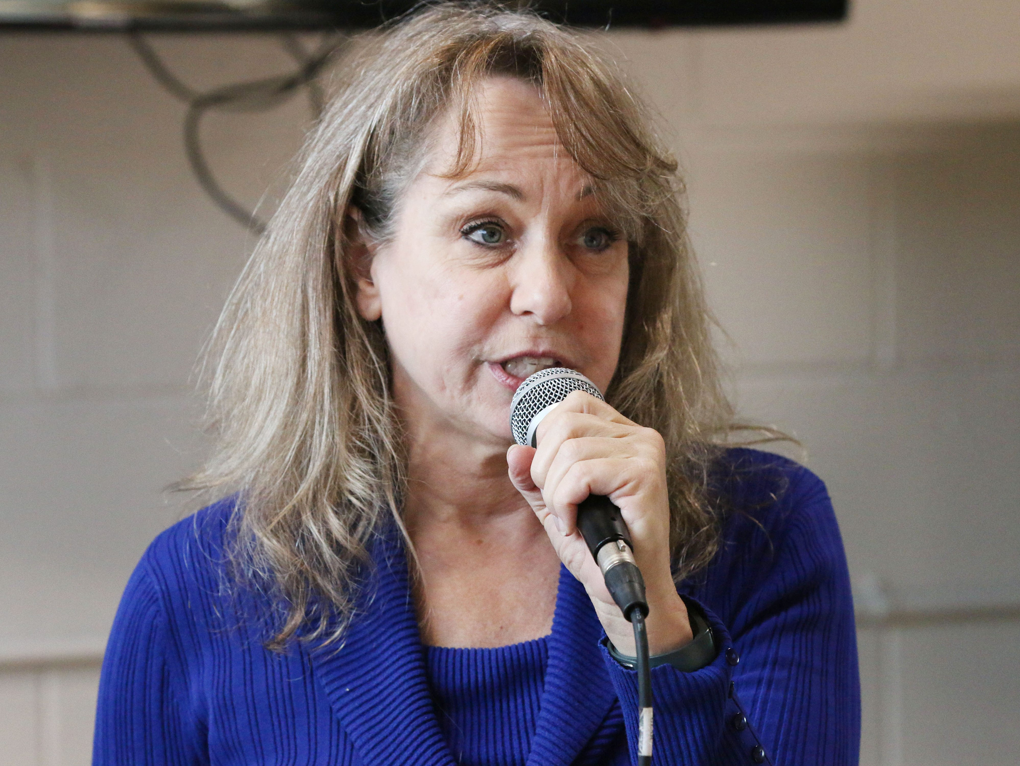 27th District Democratic Candidate Nanette Bulebosh speaks to the crowd during a Democratic campaign stop at The Hub coffee shop, Saturday, November 3, 2018, in Plymouth, Wis. Bulebosh is running for the 27th District.