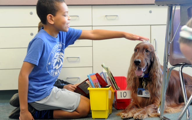 Lucas Murphy, a third-grader, reads to Quinn and pets him at Tierra Linda School in Camarillo. The therapy dog and his handler come to the school and students practice reading to him.