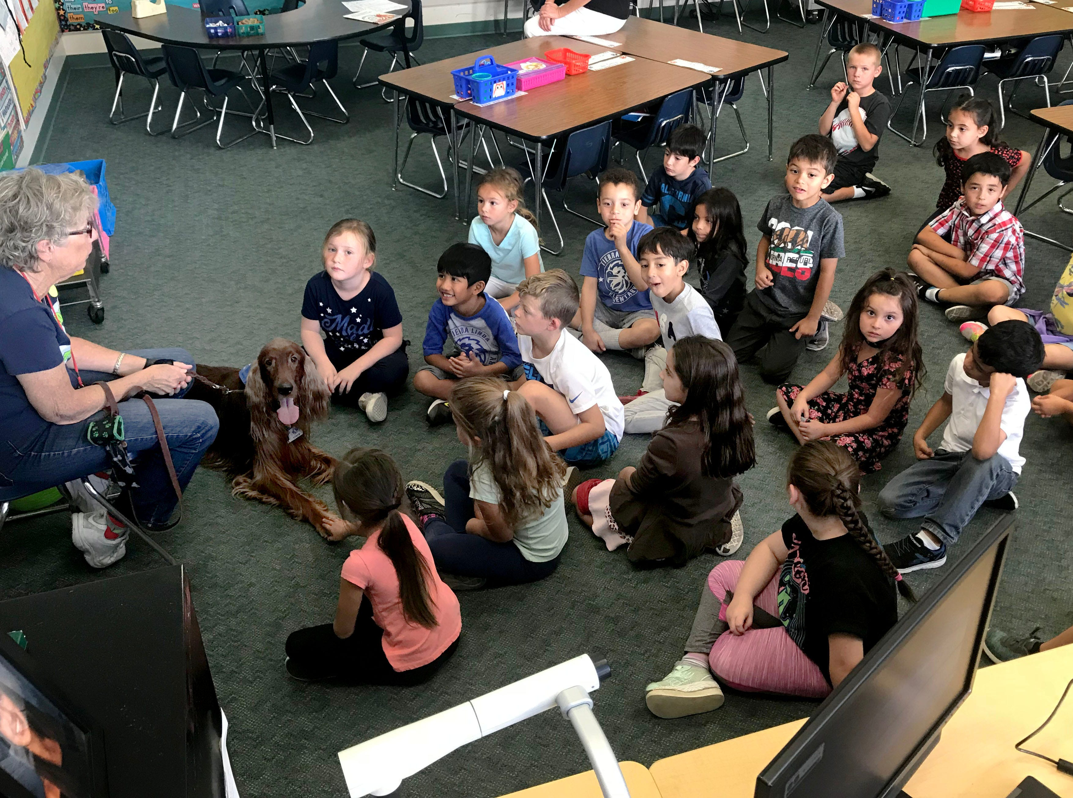 Quinn and his handler, Bobbe Jacobs, introduce themselves to a group of first-graders at Tierra Linda School in Camarillo. The therapy dog and his handler visit the school three times a week to help students practice their reading skills.