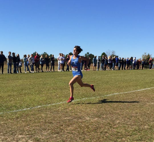 Daniel senior Alex Zangara races to the finish line to win the Class AAAA boys championship in Saturday's state cross country meet at Sandhills Research Center in Columbia.