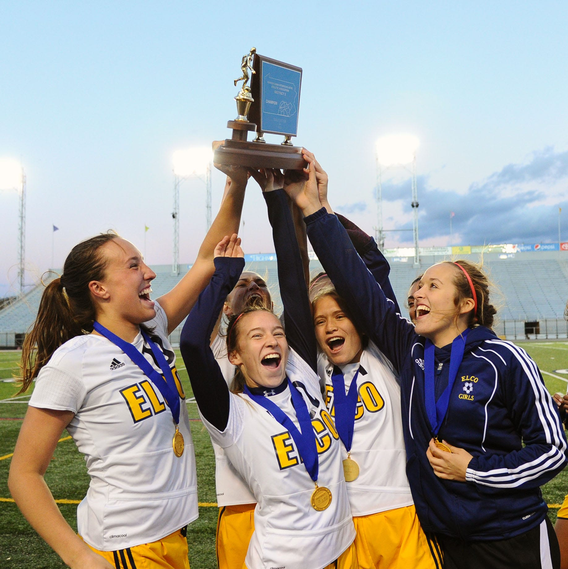 Looking back at the best of the Lebanon County fall sports season