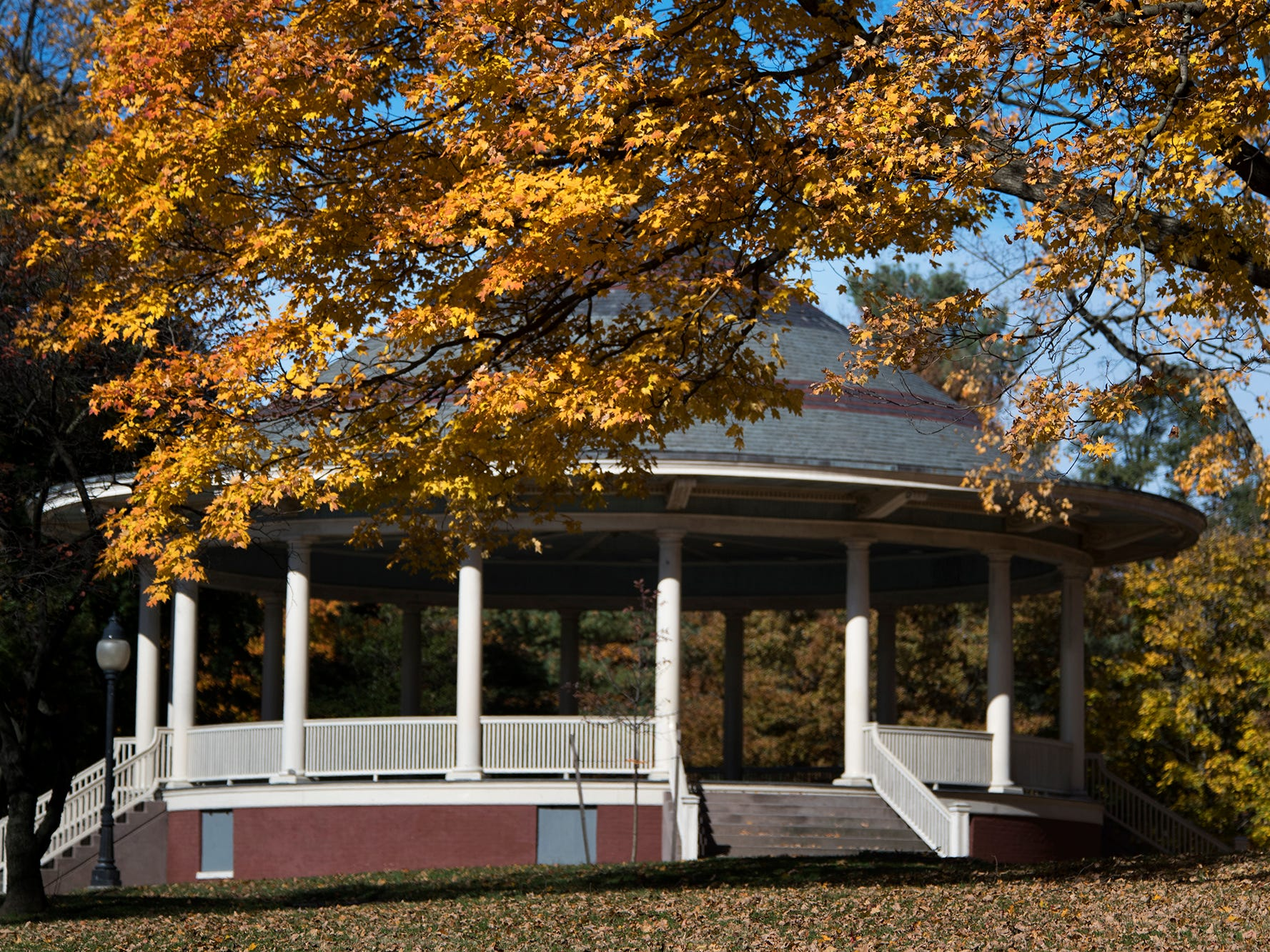 The Farquhar Park bandstand framed with Autumn leaves Sunday November 4, 2018.
