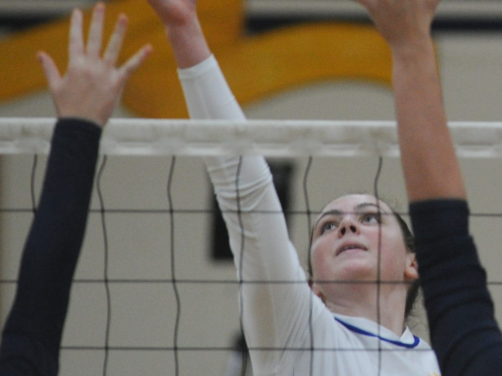 Nordhoff High's Lauren Dingman protects the net against Linfield Christian in the CIF-SS Division 7 final Saturday.