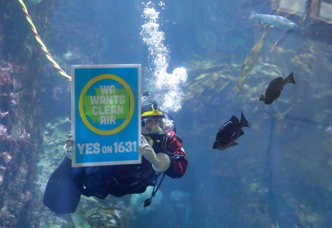 At the Seattle Aquarium on Oct. 25, 2018.