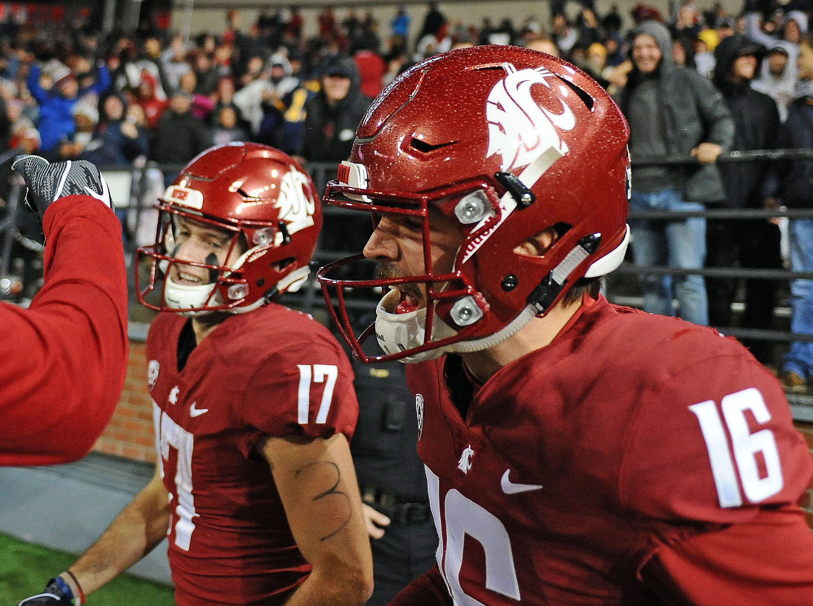 Washington State Cougars quarterback Gardner Minshew (16) celebrates a touchdown during a football game against the California Golden Bears in the second half at Martin Stadium.