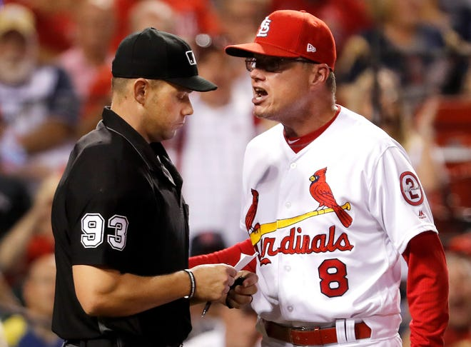 St. Louis Cardinals manager Mike Shildt yells at home plate umpire Will Little after being ejected by Little during the seventh inning of the team's baseball game against the Milwaukee Brewers on Tuesday, Sept. 25, 2018, in St. Louis. (AP Photo/Jeff Roberson)