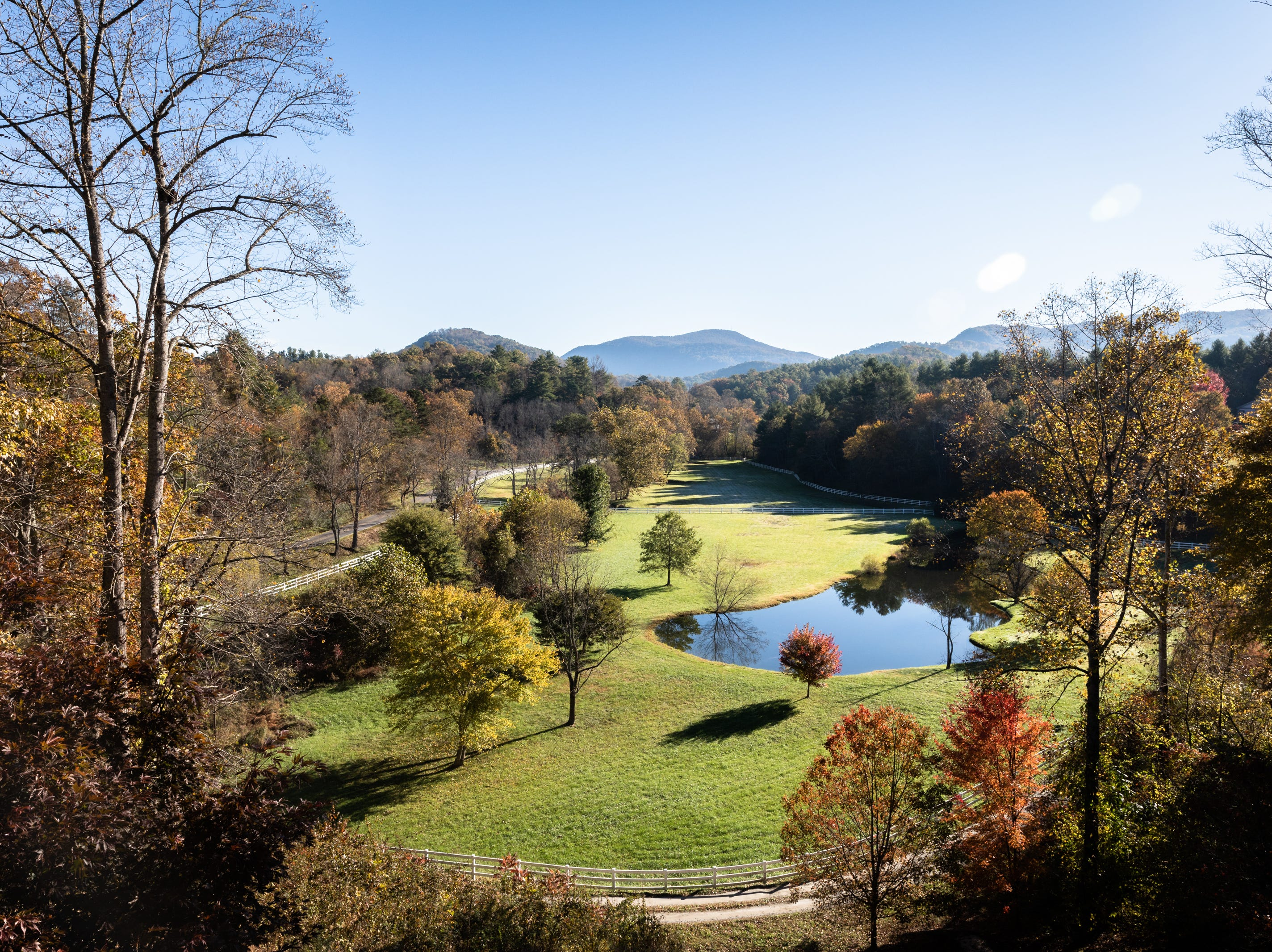 The view from the backyard of David Dudick's country estate, complete with guest house in Fletcher.