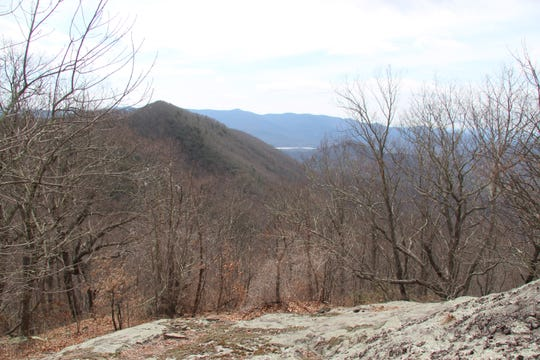 A view of the Asheville Watershed from the newly preserved Brushy Knob property in Black Mountain, also known as Big Piney.