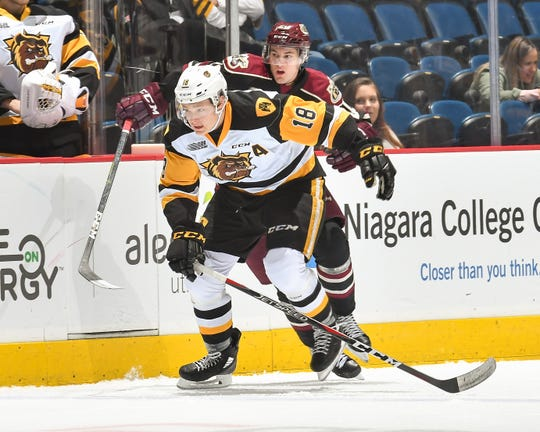 Matt Strome has six goals and 19 points in 17 games this season for the Hamilton Bulldogs.