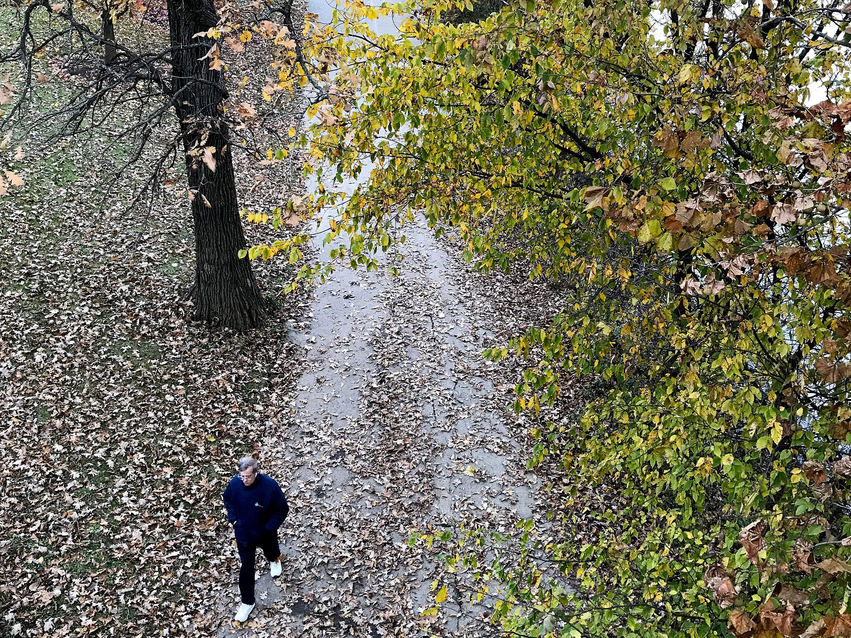A man walks along fallen leaves at Winton Woods Park Sunday, November 4, 2018.