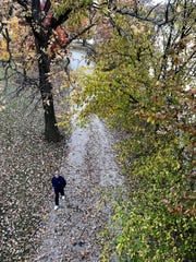 A man walks along fallen leaves at Winton Woods Park Sunday, November 4, 2018.