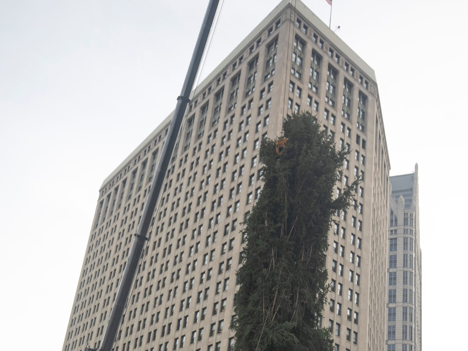 The Downtown Detroit Partnership and DTE Energy Foundation present the 2018 Detroit tree lighting and light up Beacon Park lineup for November 16 ceremonies. Workers install the 60-foot-tall Norway spruce in Campus Martius on Monday, Nov. 5, 2018.