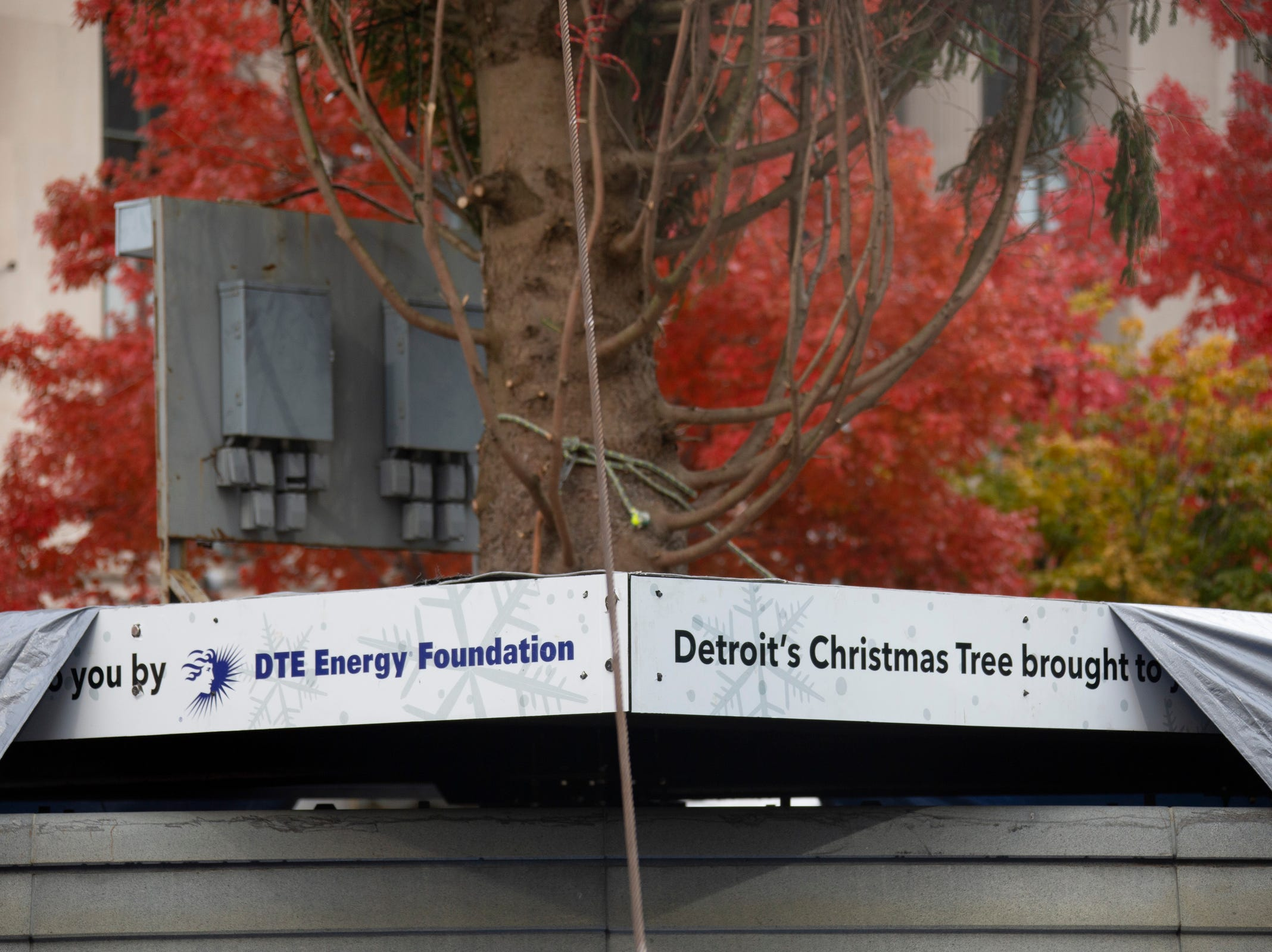 The Downtown Detroit Partnership and DTE Energy Foundation present the 2018 Detroit tree lighting and light up Beacon Park lineup for November 16 ceremonies. Workers take on the 60-foot-tall Norway spruce as they place it in Campus Martius Monday, Nov. 5, 2018.