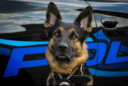 Suspect, K-9 officer killed in...