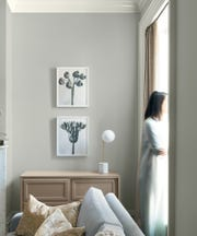Benjamin Moore's Color of the Year 2019.