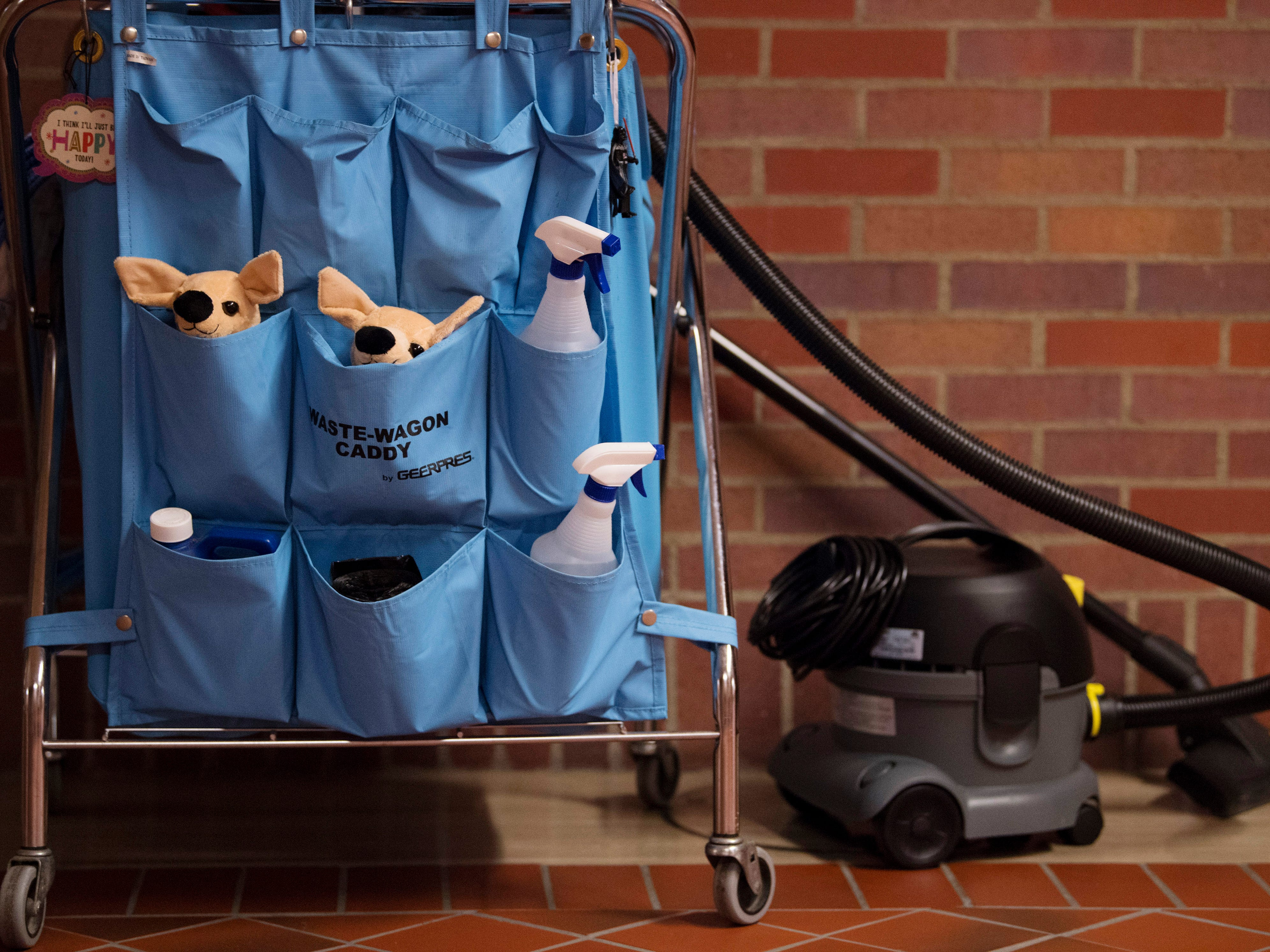 A pair of joeys take up residence in a custodial caddy at the Vanderburgh County Civic Center Monday afternoon.
