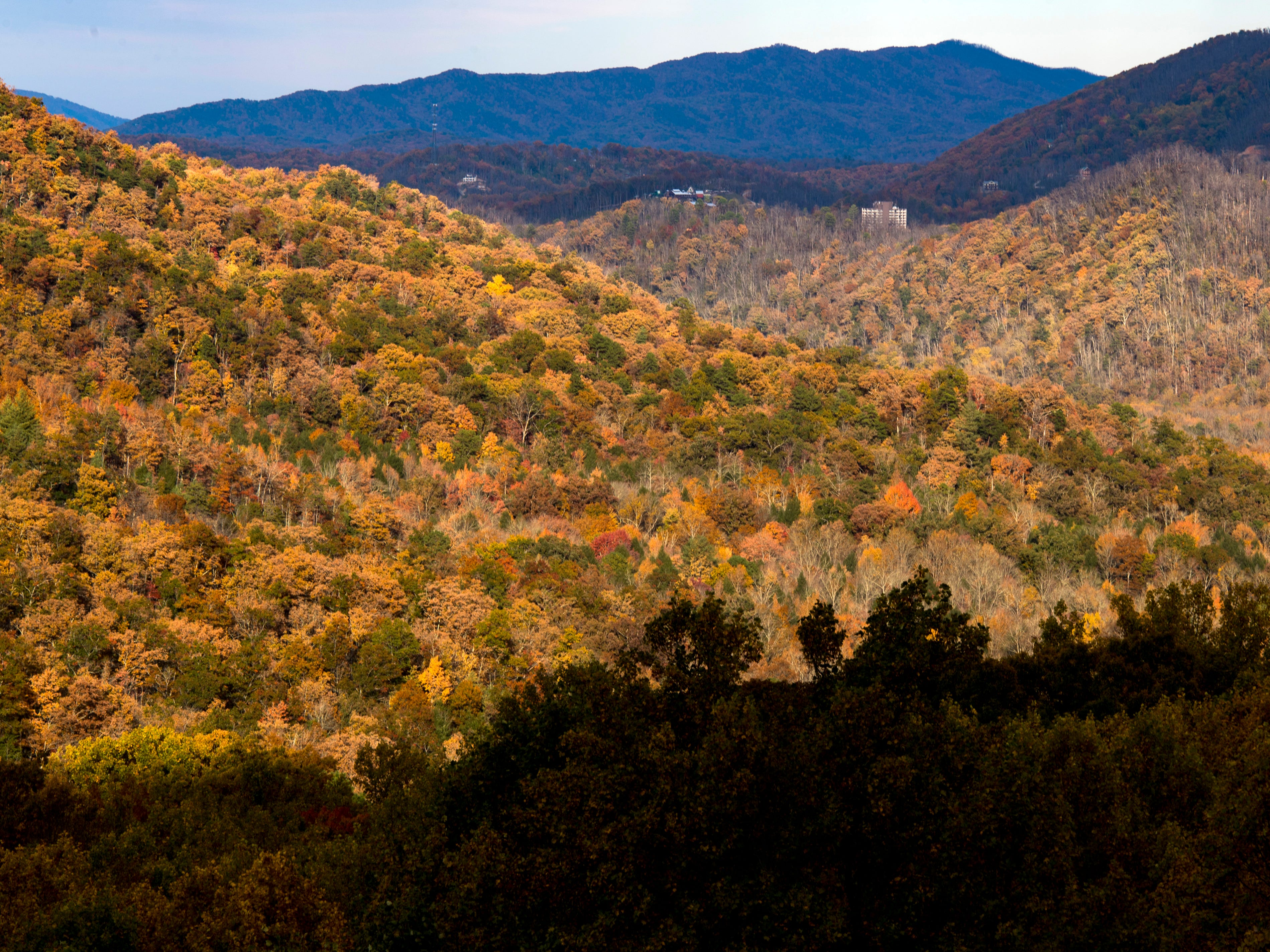 Fall foliage looking toward Gatlinburg in the Great Smoky Mountains National Park on Sunday, November 4, 2018.