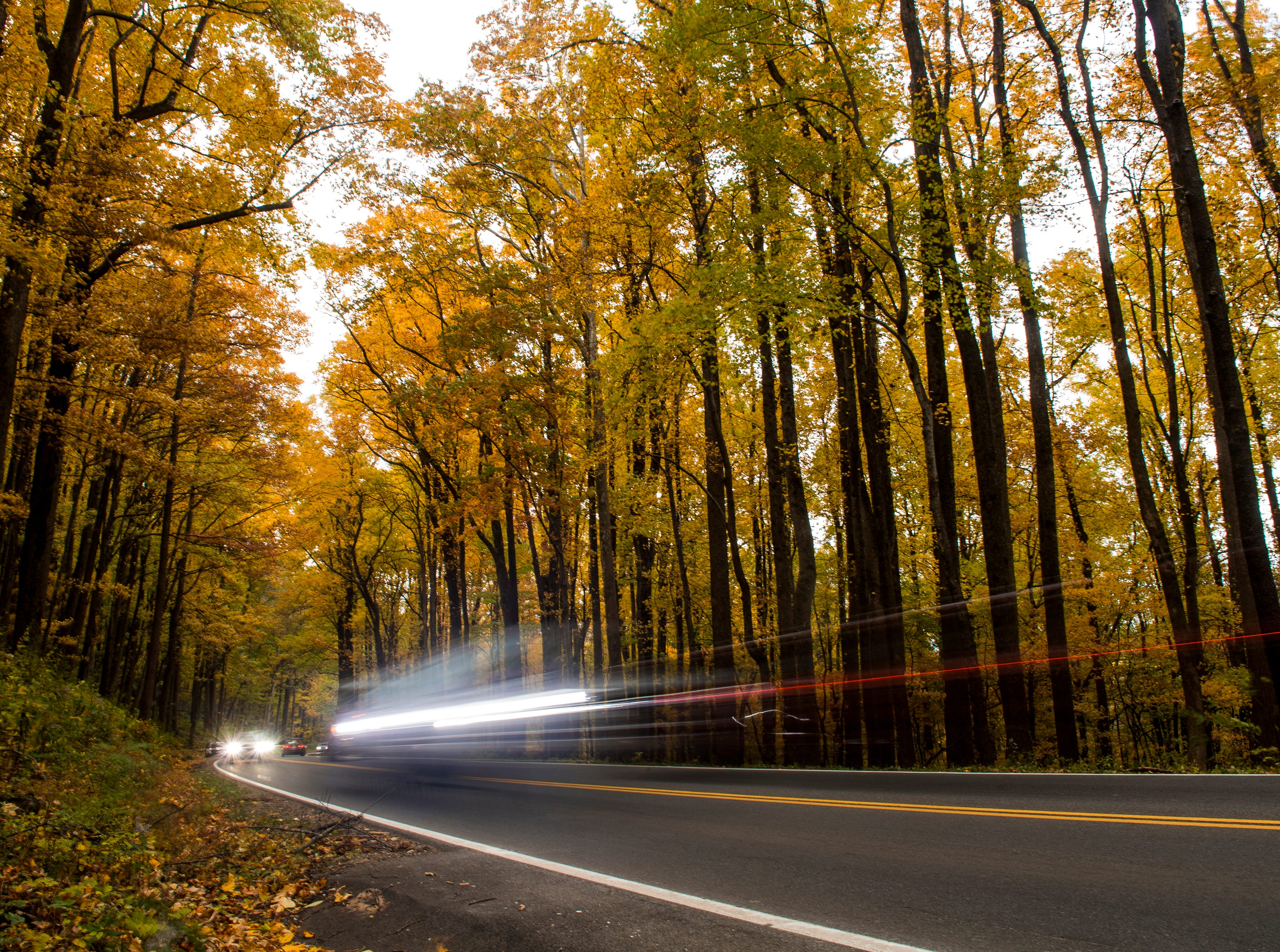 Fall foliage surround cars driving along U.S. Highway 441 in the Great Smoky Mountains National Park on Sunday, November 4, 2018.
