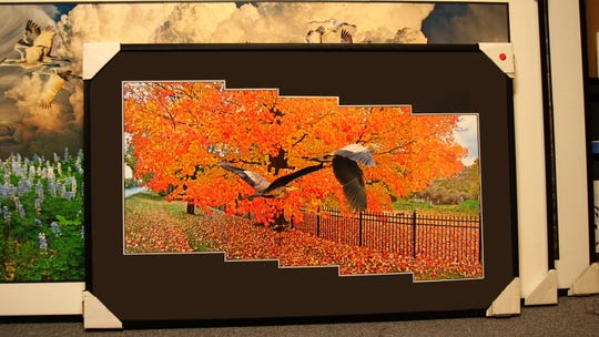 A collage created by Darry Melton showing birds flying in an autumn scene.