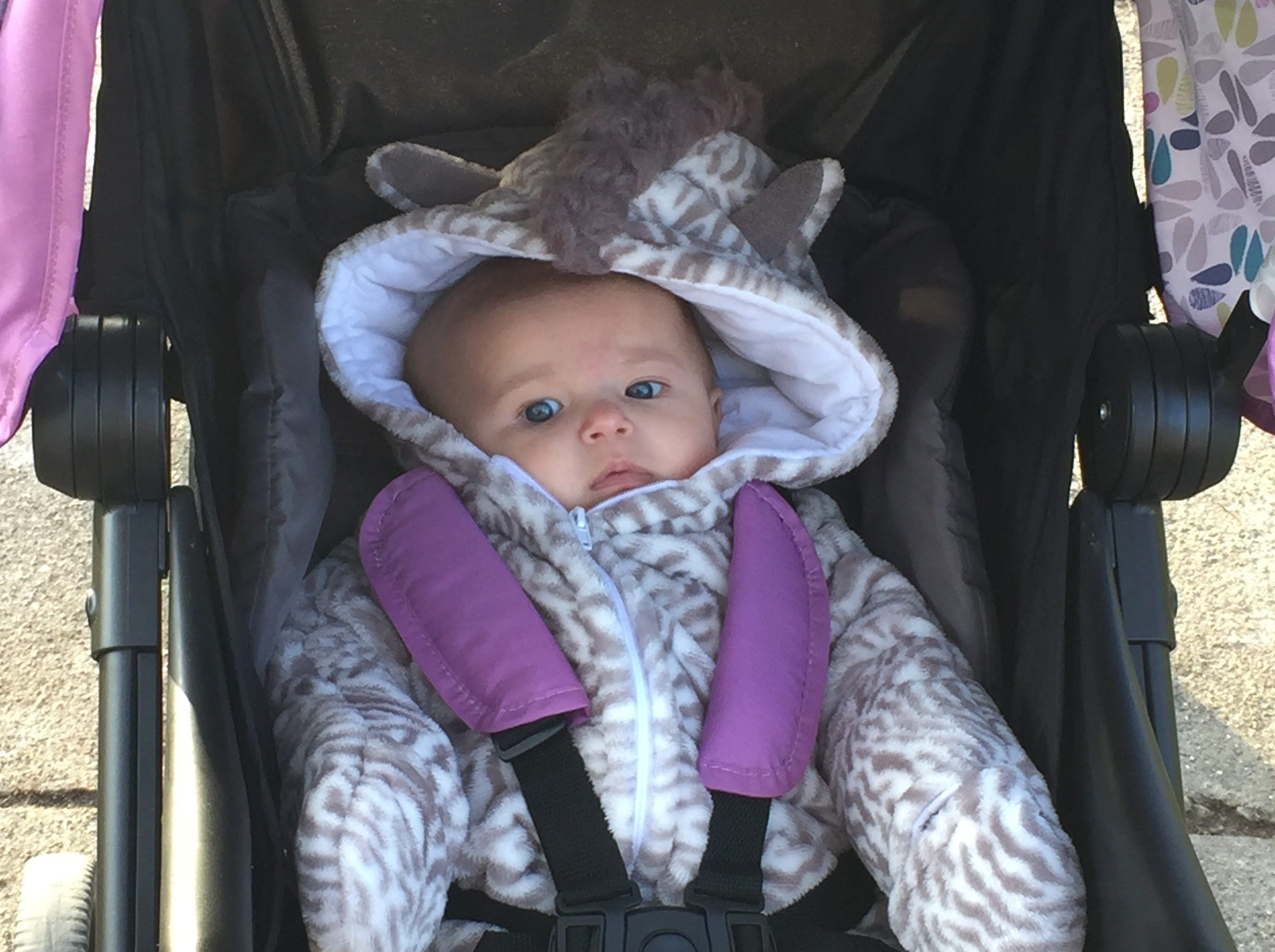 Ellie Tennies, 3 months, all dressed up as a zebra for Halloween.  Her parents are Heather and Joe Tennies of Brandon.