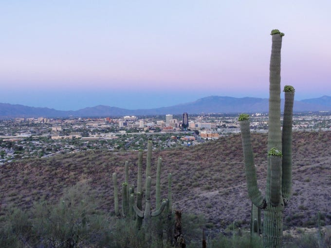 The view of downtown Tucson from near the top of Tumamoc Hill