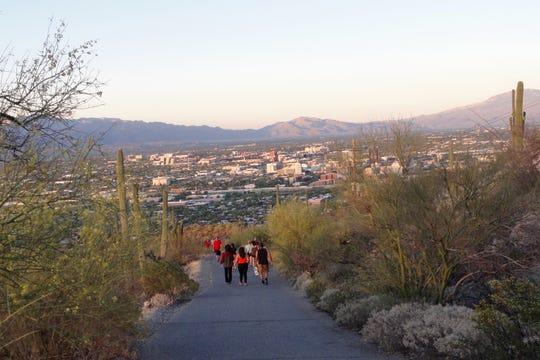 An average of 1,000 people a day walk Tumamoc Hill.