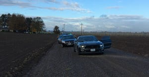 Deputies are investigating a body found in a field near St. Paul Monday, November 5.