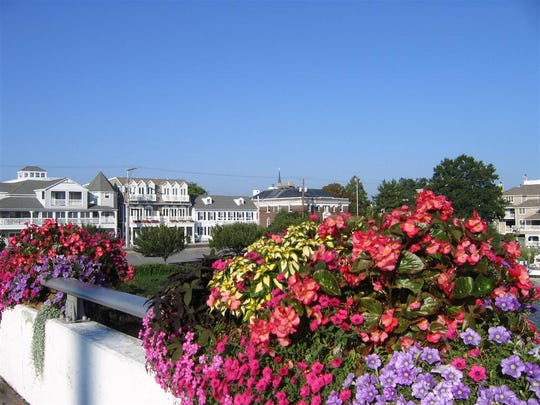 Lewes in Bloom has recently won a major gardening award in Canada and was asked to plant a garden in Italy.