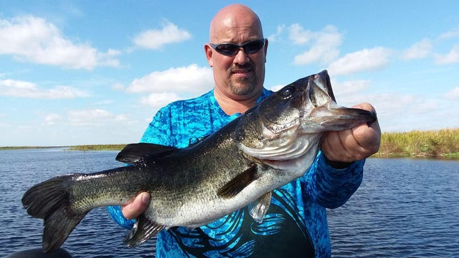 Bill Pattingale of Chicago learned first hand why Lake Okeechobee bass fishing is unlike anywhere else. He caught and released this big one Friday as part of a catch of 44 total bass while fishing with Capt. Nate Shellen of Okeechobeebassfishing.com.