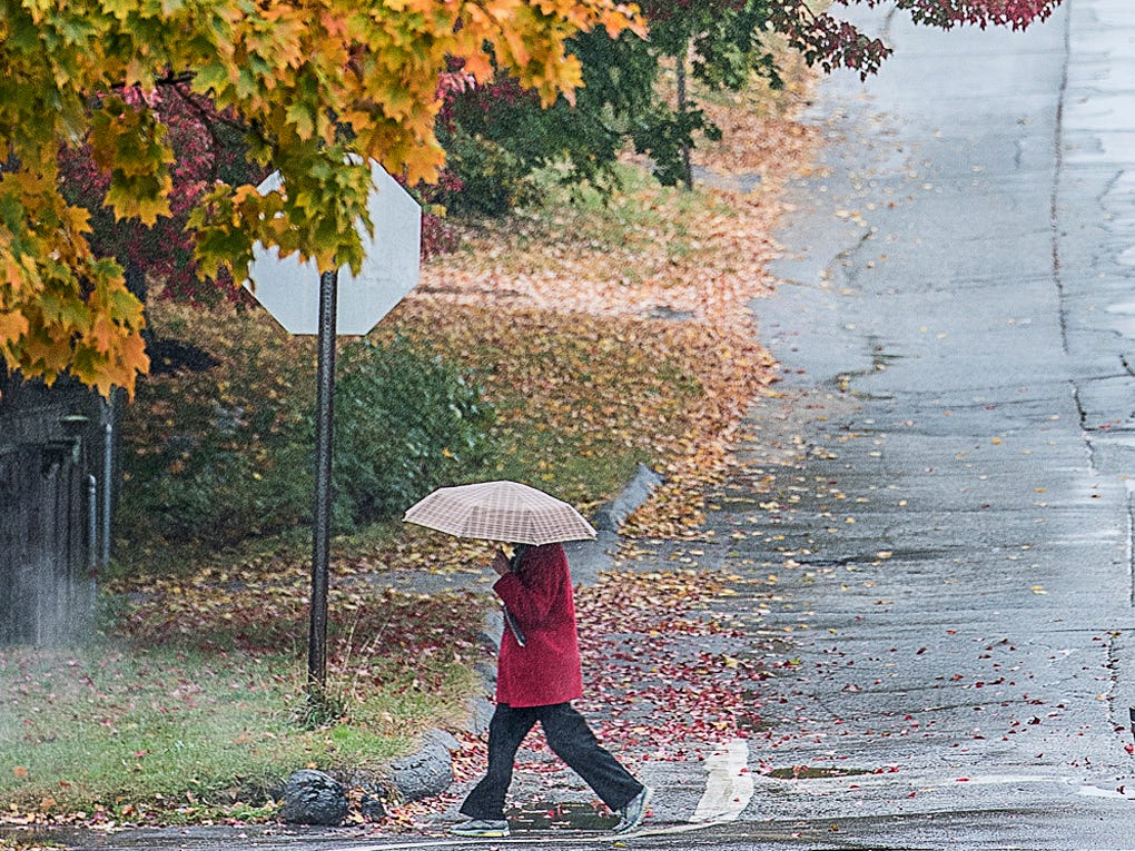 A pedestrian walks along College Street in Lewiston, Maine on Monday, Oct. 15, 2018 in a light rain. The autumn foliage is in peak color this week in the region.