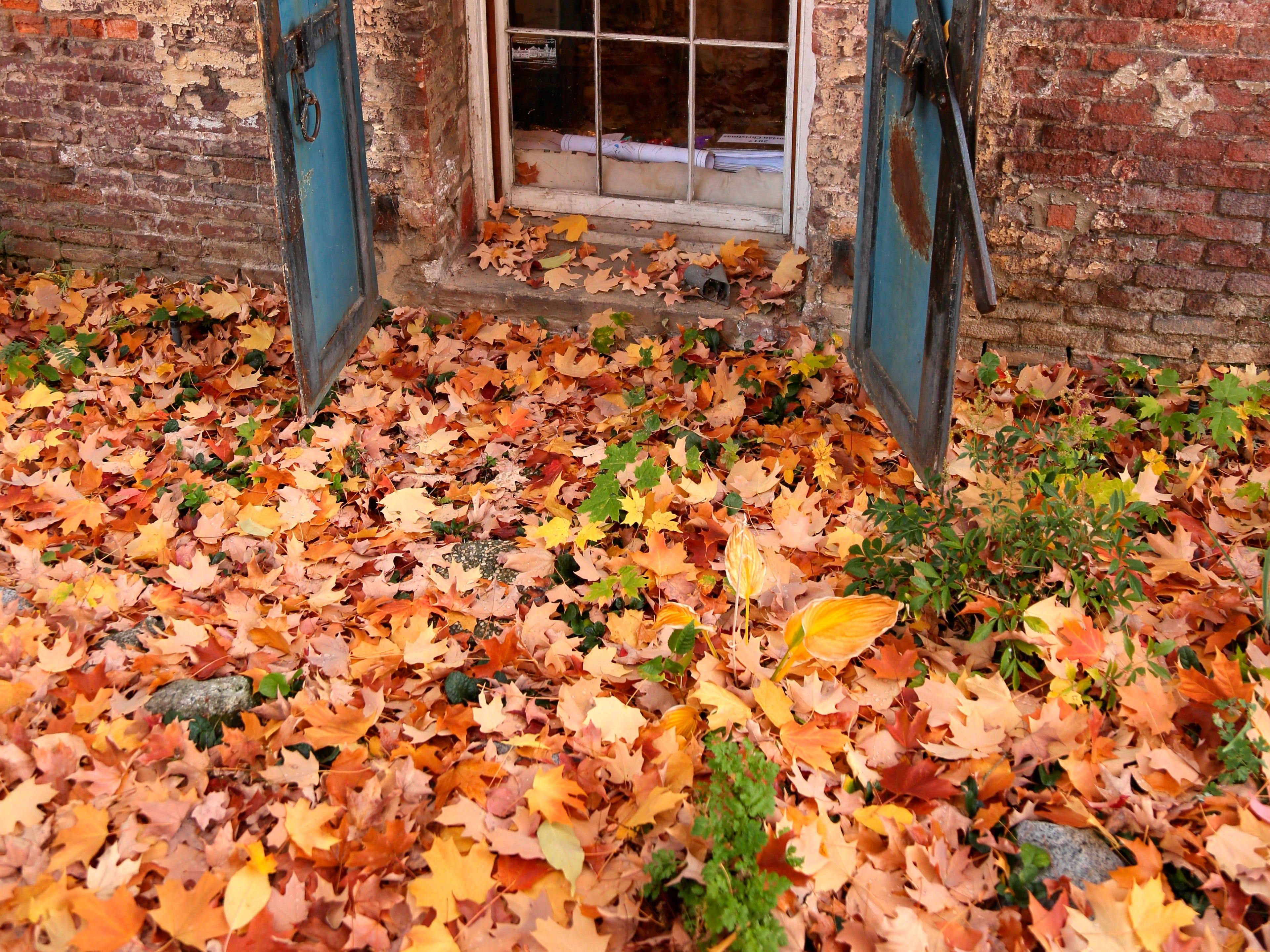Autumn colored leaves gather near the iron doors of the historic Assay Office Tuesday, Oct. 30, 2018, in downtown Nevada City, Calif.