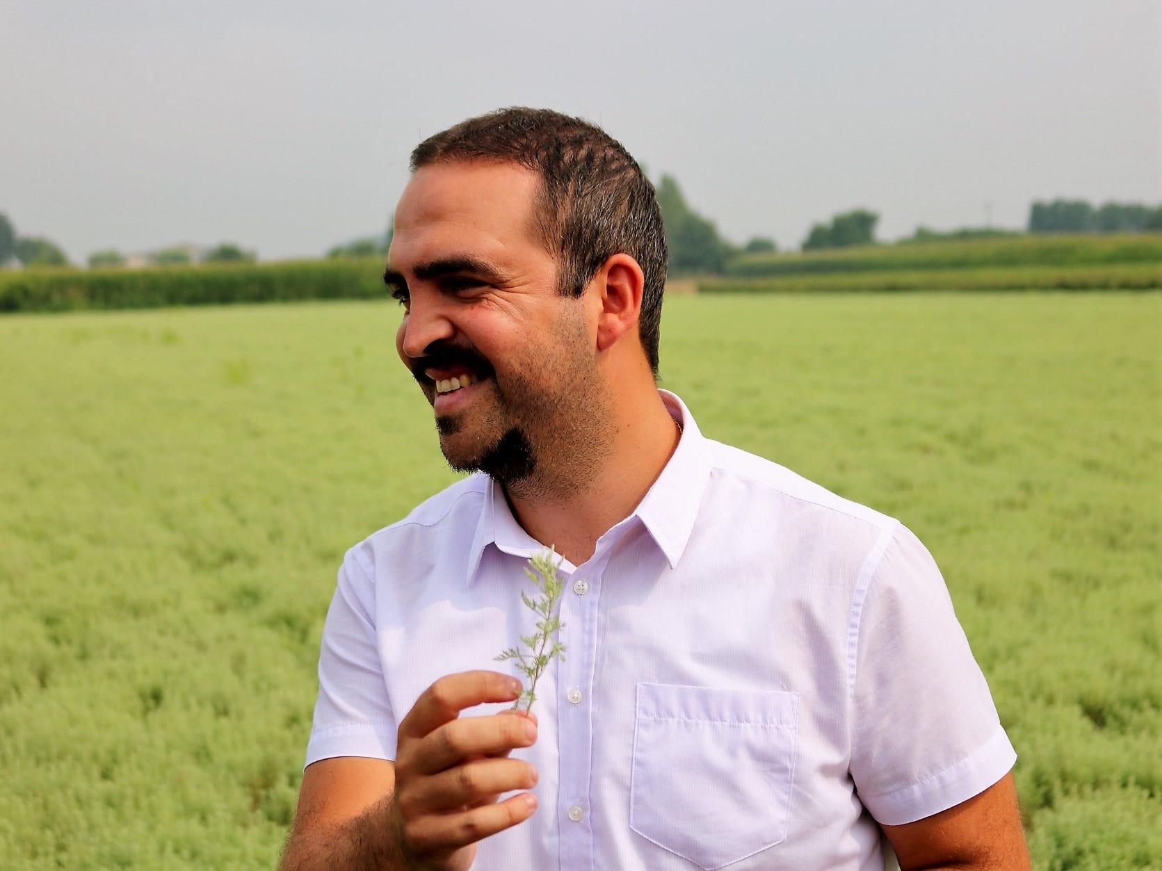 "Artemisia, or wormwood, is the key bittering ingredient, with Martini using three distinct varieties. ""Artemisia is the queen of botanicals,"" Garneri says."