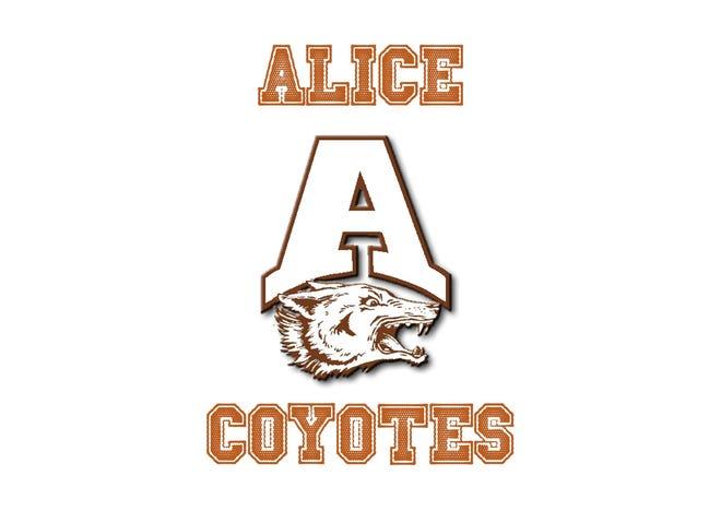 Alice Coyotes