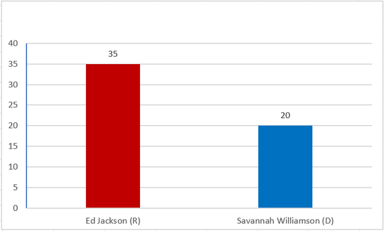 Madison County exit poll of Tennessee State Senate race.