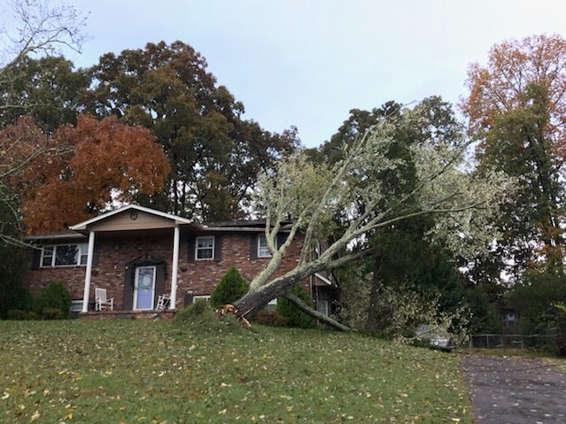 A tree in Kingsgate subdivision in Farragut fell on a house during storms early on Tuesday, Nov. 6, 2018.