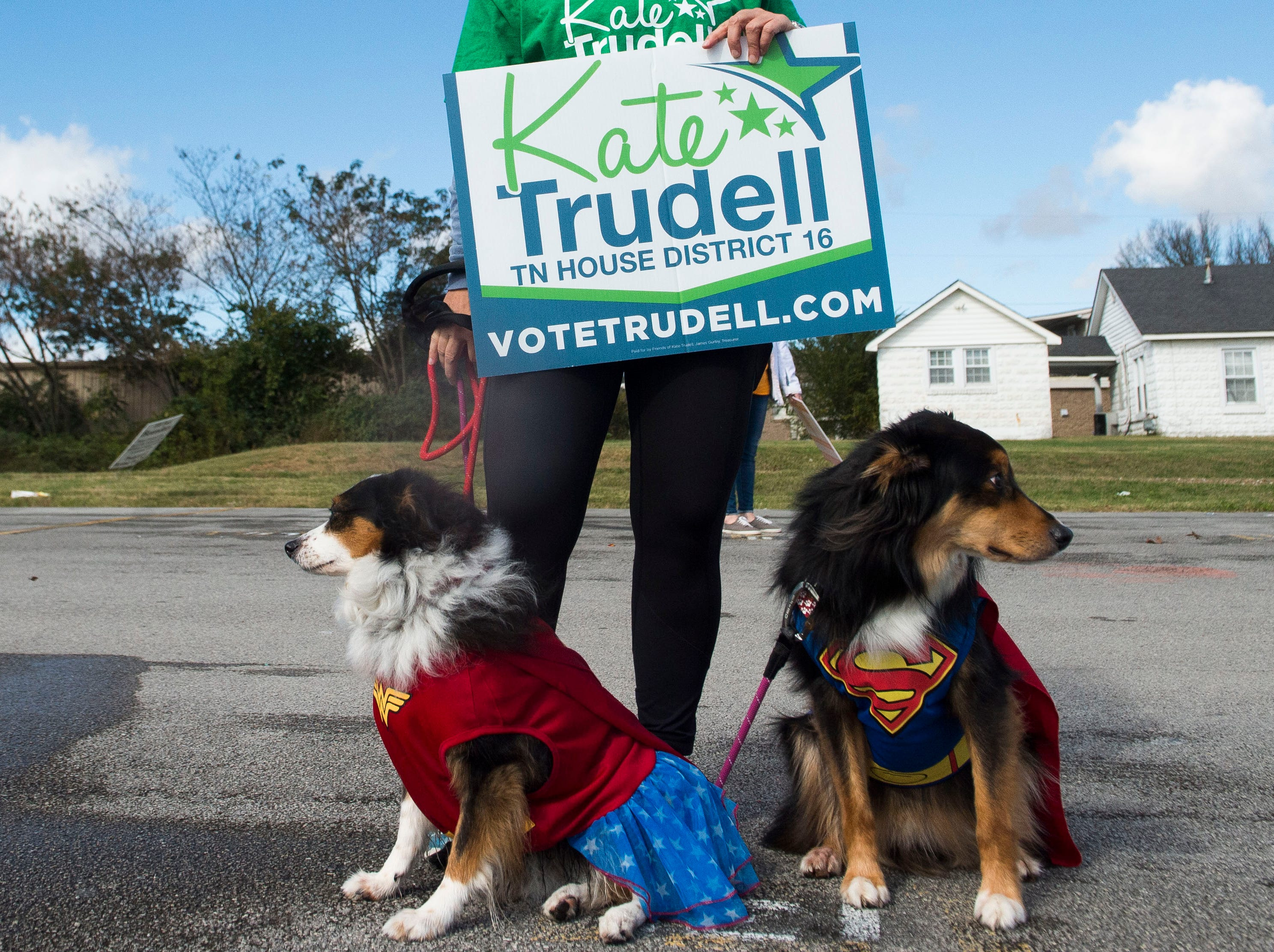 Leigh Garrett stands with her dogs Zoey, left, and Zander, right, while campaigning for Kate Trudell and Phil Bredesen, outside Powell High School's sports complex in Powell on Election Day, Tuesday, Nov. 6, 2018.