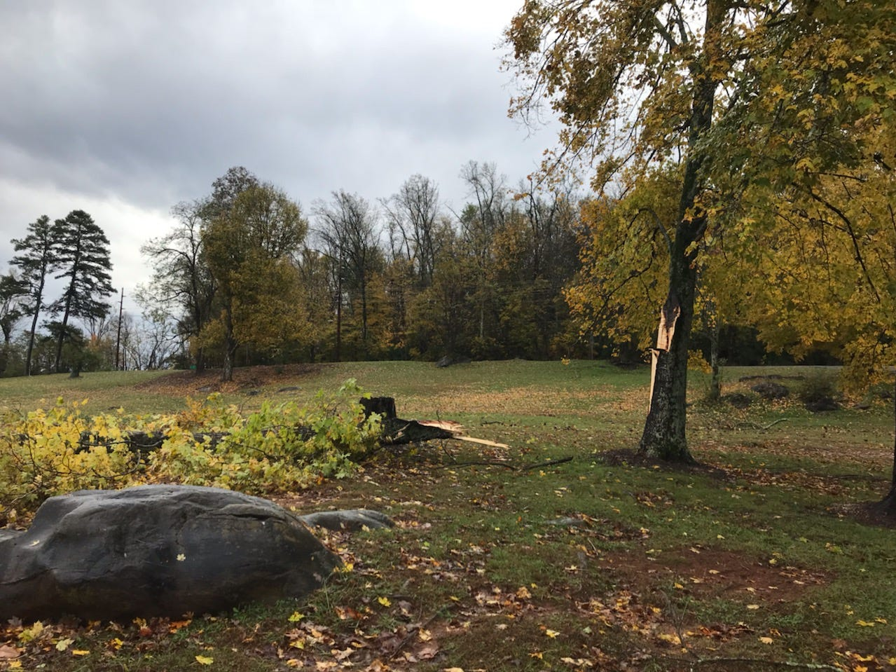 Storm damage to a tree at Concord Park Rocky Point in Farragut on Tuesday, Nov. 6, 2018.