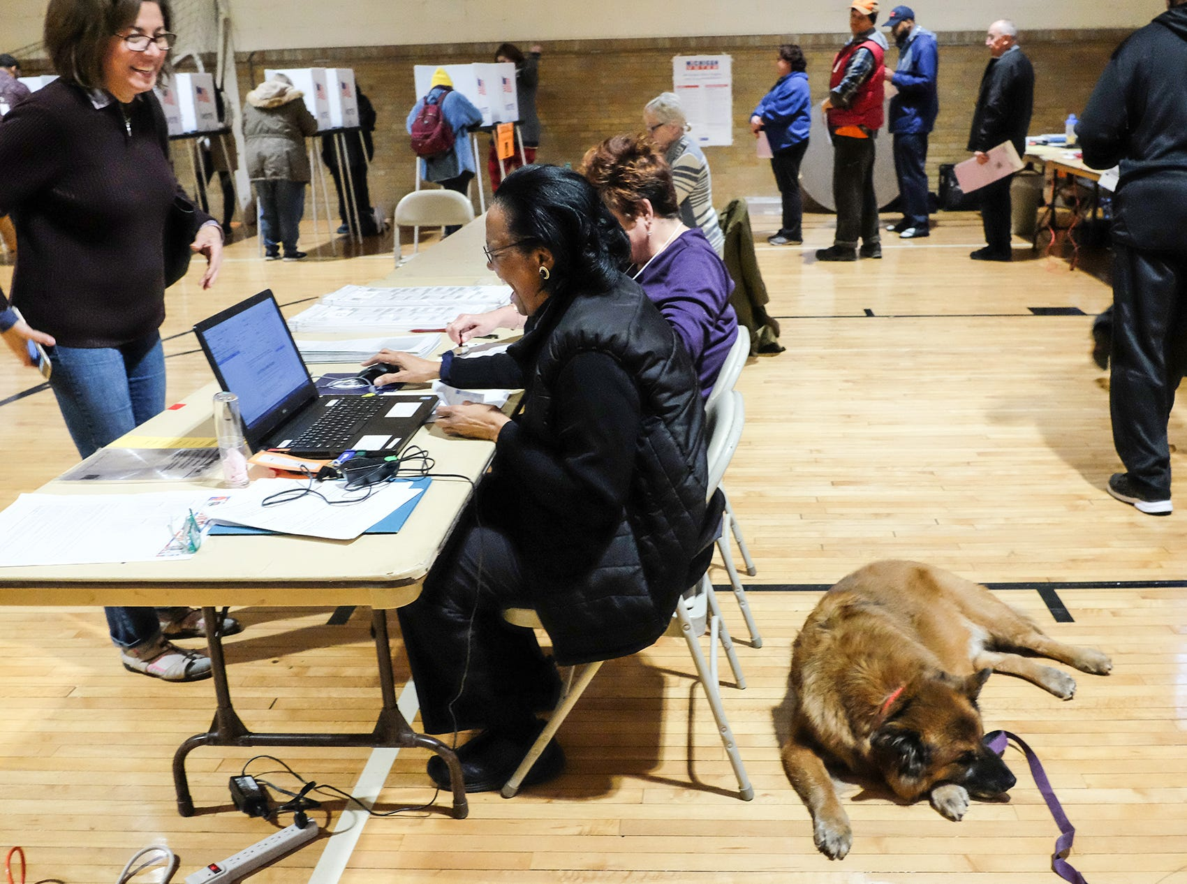 A companion dog takes a snooze as voting goes on all around at Foster Community Center Tuesday, Nov. 6, 2018.