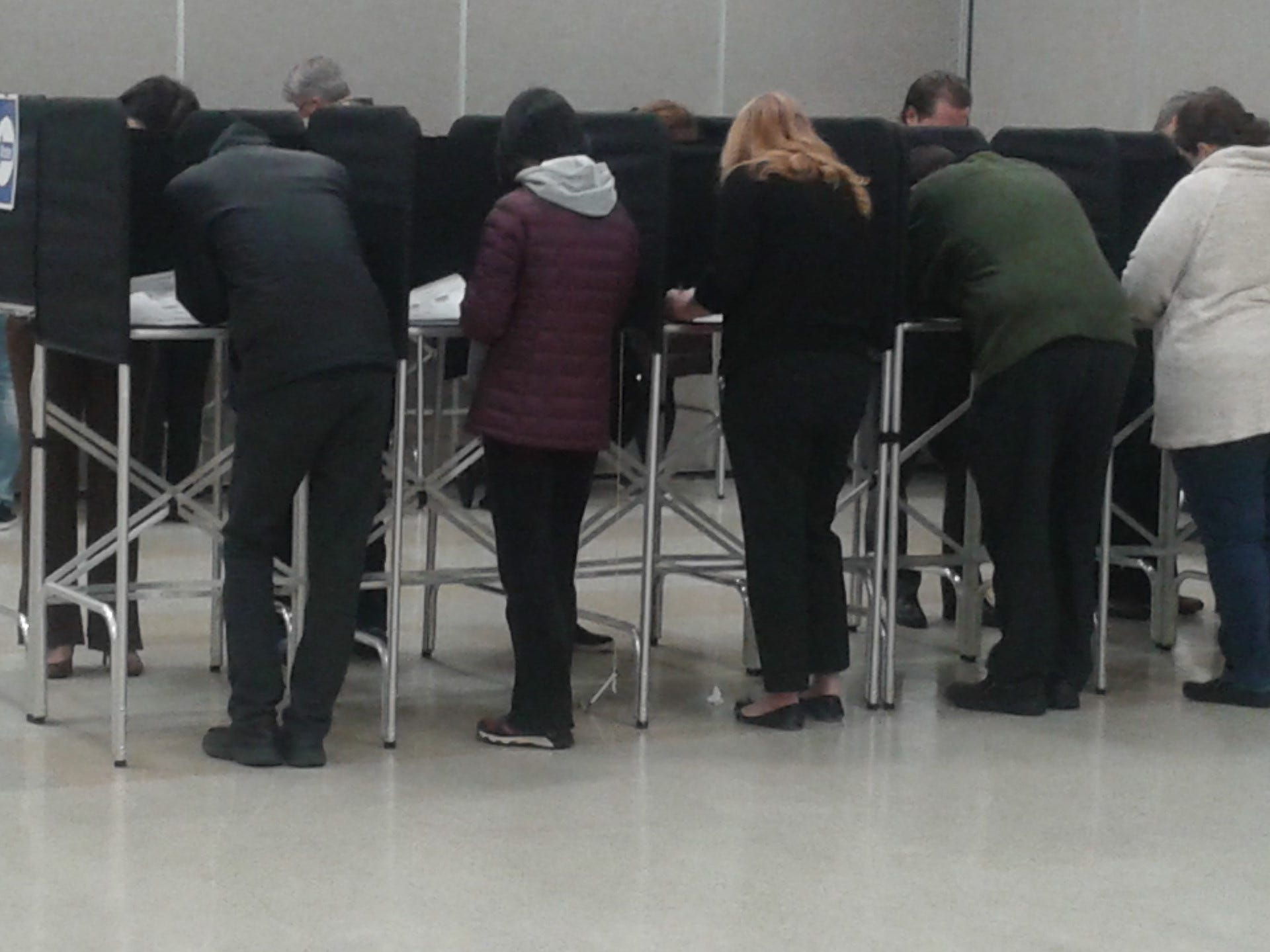 Voters work on their ballots at precinct #18 in the Novi Municipal Center.
