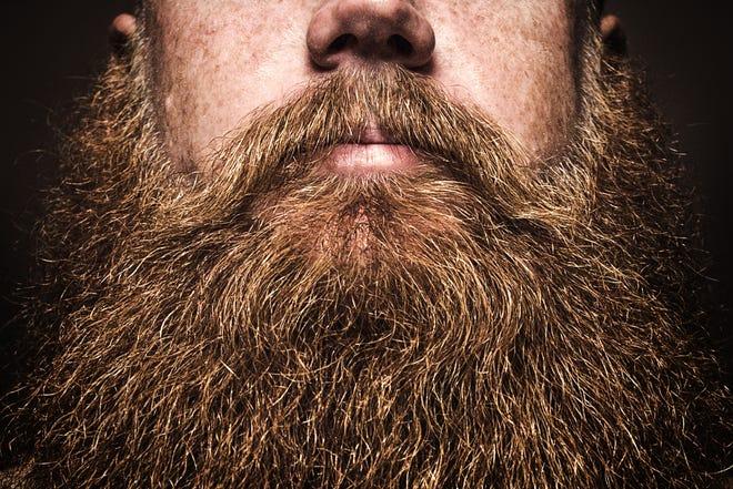 A close-up of a full beard.