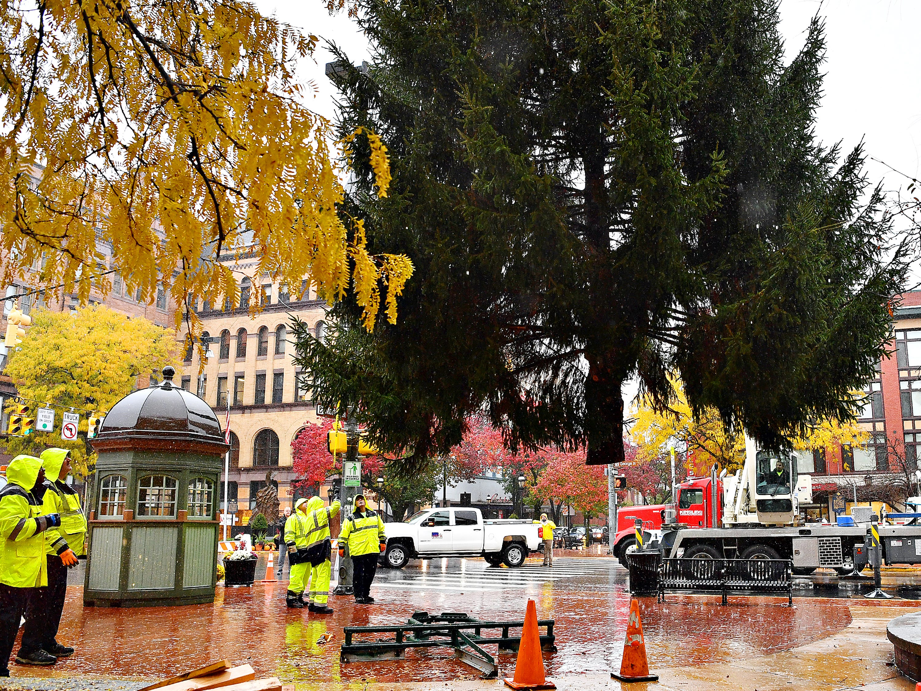 The York Community Christmas Tree, donated by Robin Hildeband, of York, is placed in Continental Square in York City, Tuesday, Nov. 6, 2018. Once decorated, the tree will be lit during the annual Light Up York ceremony to be held in the square amidst a day of family activities on Saturday, Dec. 1. Dawn J. Sagert photo